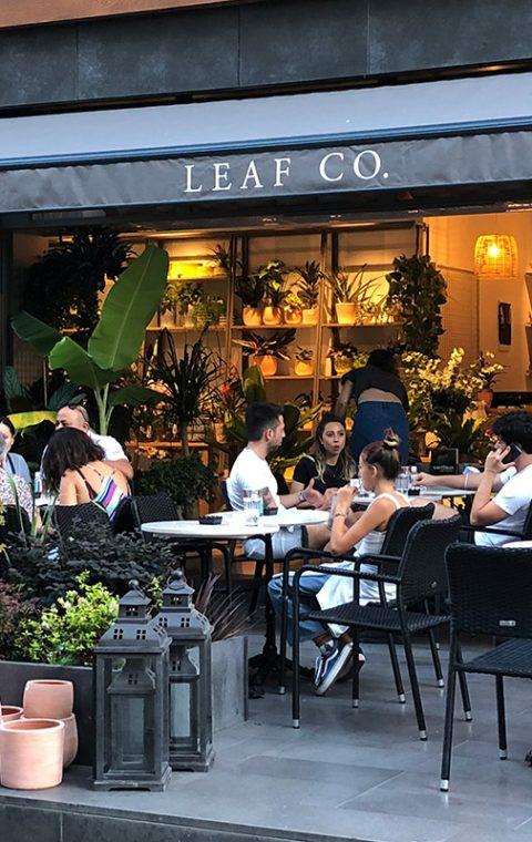 Leaf Co.